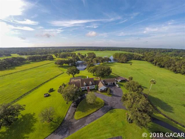 20925 NW 100TH AVENUE Road, Micanopy, FL 32667 (MLS #418366) :: Florida Homes Realty & Mortgage