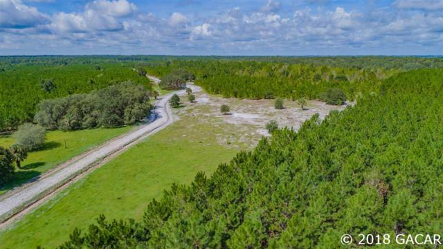 TBD Yelvington Road, Palatka, FL 32177 (MLS #418386) :: Pepine Realty