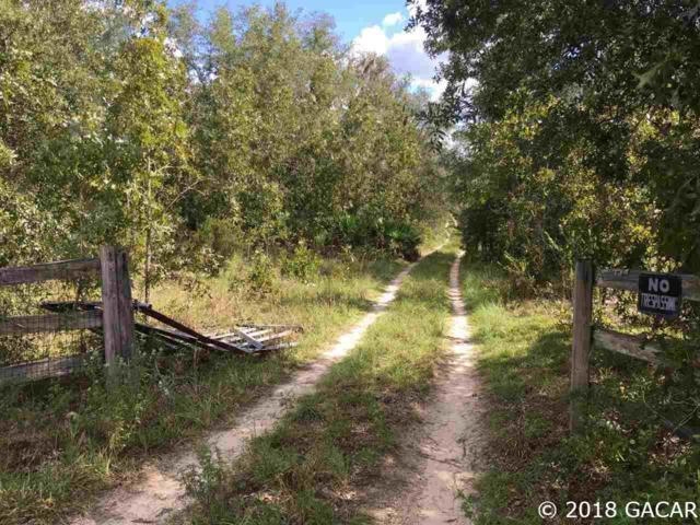 12850 NE 75th Street, Bronson, FL 32621 (MLS #418589) :: Bosshardt Realty