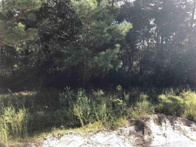 00 SE 55th Street, Keystone Heights, FL 32656 (MLS #418607) :: Bosshardt Realty