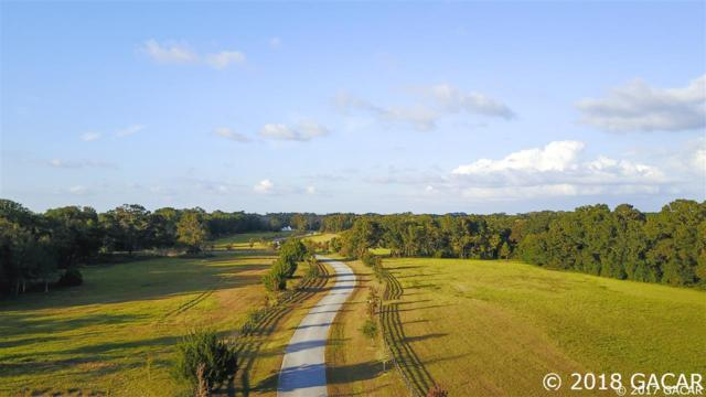 Lot 6 - 20757 NW 100th Lane, Alachua, FL 32615 (MLS #418860) :: Bosshardt Realty
