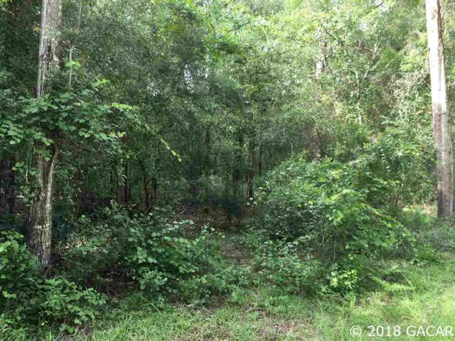 TBD NE 7th Place, Williston, FL 32696 (MLS #418905) :: Bosshardt Realty