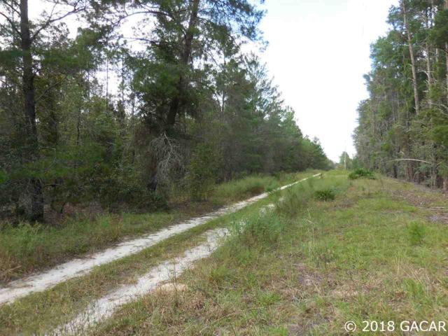 TBD NE 40th Lane & 135th Avenue, Williston, FL 32696 (MLS #418956) :: Rabell Realty Group