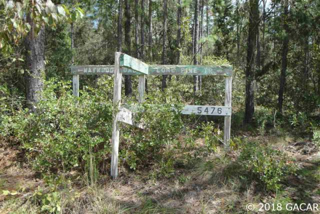 0000 Old Bellamy Trail, Melrose, FL 32666 (MLS #419047) :: Pepine Realty