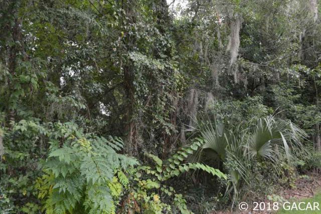 NE 74 Place, Bronson, FL 32621 (MLS #419209) :: Bosshardt Realty