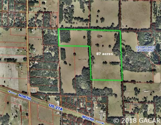 17431 NE Hwy 27 Alt, Williston, FL 32696 (MLS #419254) :: Bosshardt Realty