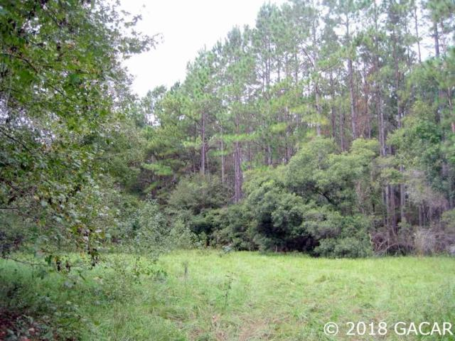 00 NW 202nd Avenue, Alachua, FL 32615 (MLS #419704) :: Bosshardt Realty