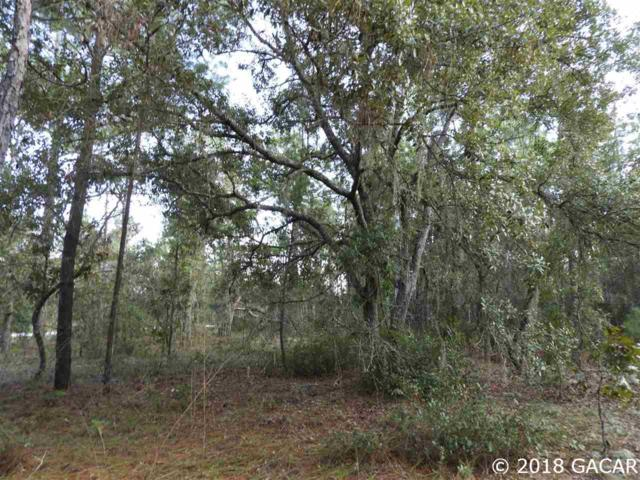 7464 Bienville Ave, Keystone Heights, FL 32656 (MLS #419770) :: Bosshardt Realty
