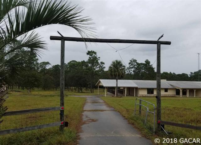 144 Jack Oak Drive, Melrose, FL 32666 (MLS #419834) :: Rabell Realty Group