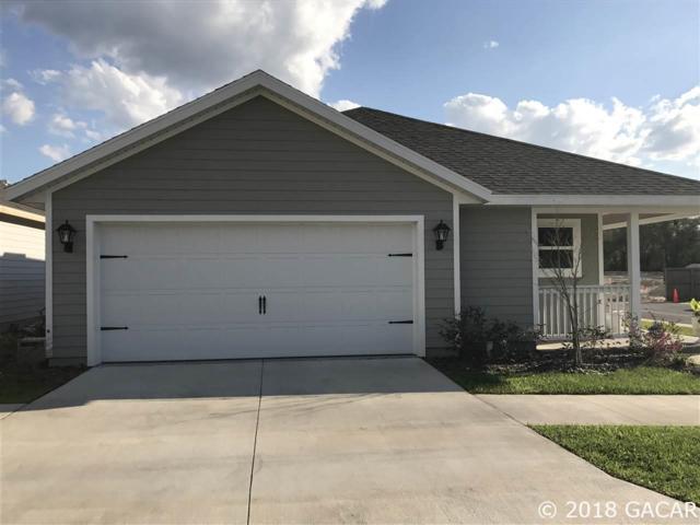 539 SW 251 Street, Newberry, FL 32669 (MLS #419896) :: Thomas Group Realty