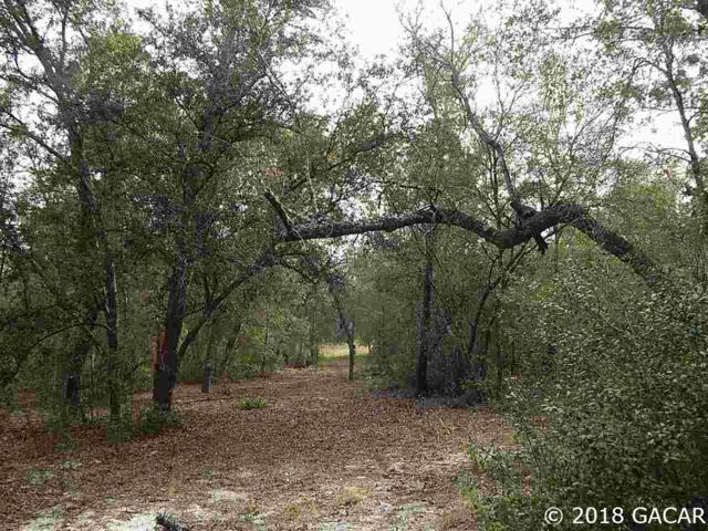 00 County Road 219, Melrose, FL 32666 (MLS #420116) :: OurTown Group
