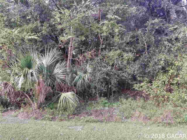 0000 SE 184th, Hawthorne, FL 32640 (MLS #420120) :: Abraham Agape Group