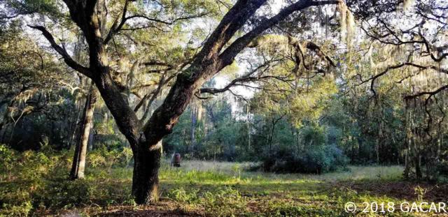 124 Lake Serena Drive, Melrose, FL 32666 (MLS #420273) :: Florida Homes Realty & Mortgage