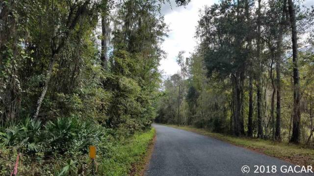 17405 SE 26th Street, Micanopy, FL 32667 (MLS #420291) :: Rabell Realty Group