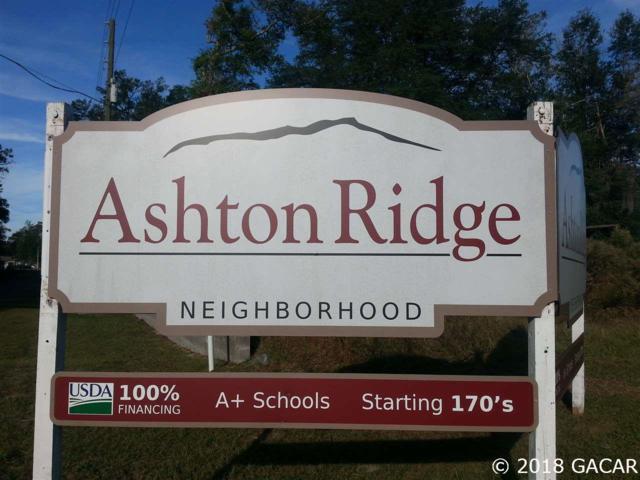 24927 NW 202ND Lane, High Springs, FL 32643 (MLS #420418) :: Rabell Realty Group
