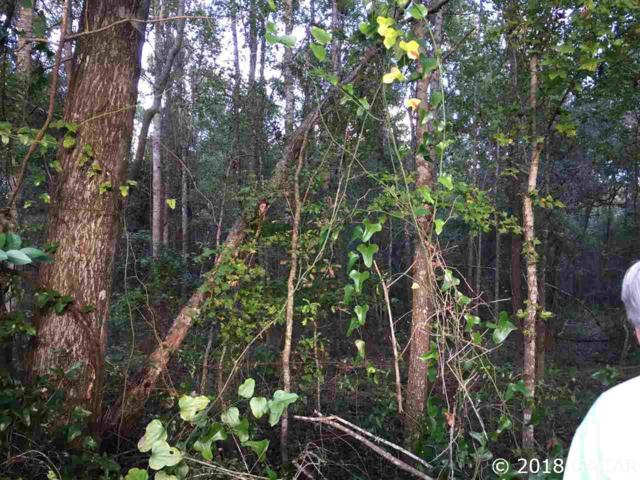 00 NW 75th Street, Alachua, FL 32615 (MLS #420631) :: Rabell Realty Group