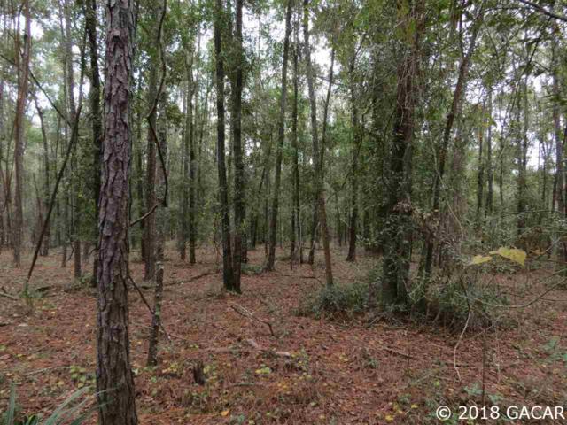 Lot 28 SE 11th Trail, Trenton, FL 32693 (MLS #420745) :: Pristine Properties