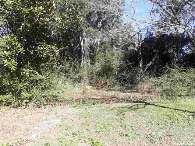 TBD NW 191st Avenue, High Springs, FL 32643 (MLS #421253) :: Rabell Realty Group