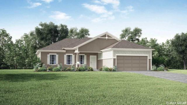 911 NW 253rd Drive, Newberry, FL 32669 (MLS #421371) :: Rabell Realty Group
