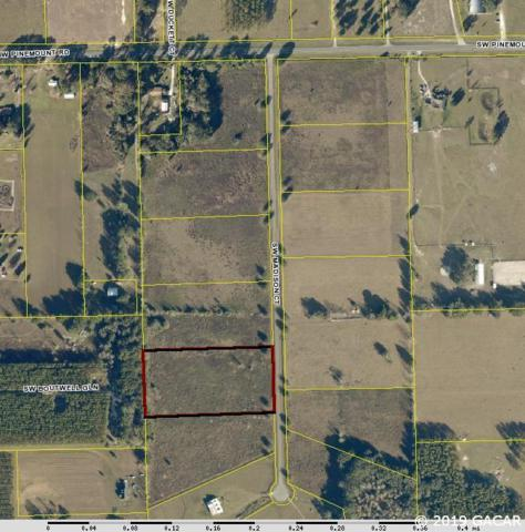TBD SW Madison Court, Lake City, FL 32024 (MLS #421393) :: Pepine Realty