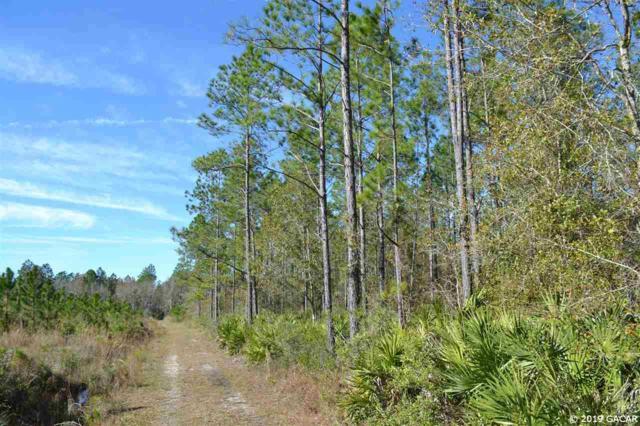 E Cr-225, Waldo, FL 32609 (MLS #421434) :: Bosshardt Realty