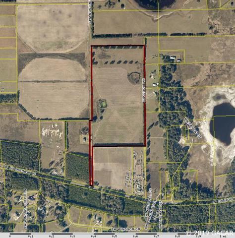 308 NW Lake Wilson Way, Lake City, FL 32055 (MLS #421455) :: Bosshardt Realty