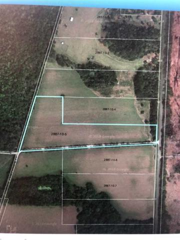 23378 NW County Rd 241 Road, Alachua, FL 32615 (MLS #421842) :: Thomas Group Realty