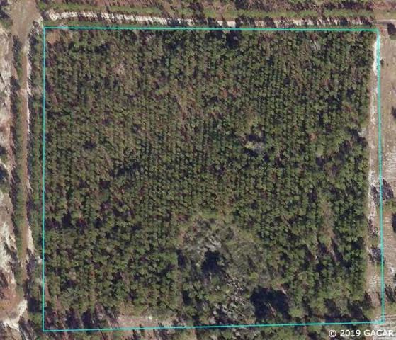 Off Co Road 337, Trenton, FL 32693 (MLS #421954) :: Pristine Properties