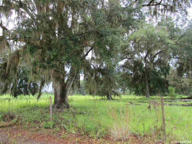 430 SW Wilson Road, Ft. White, FL 32038 (MLS #422096) :: Bosshardt Realty