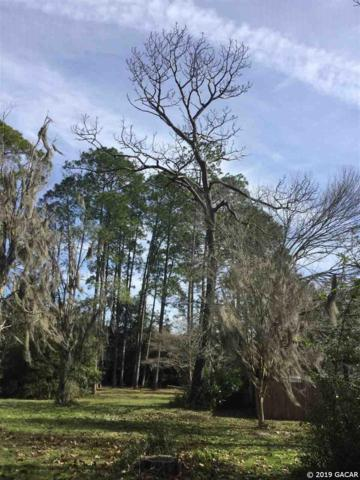 00 SW 255 Street, Newberry, FL 32669 (MLS #422276) :: OurTown Group