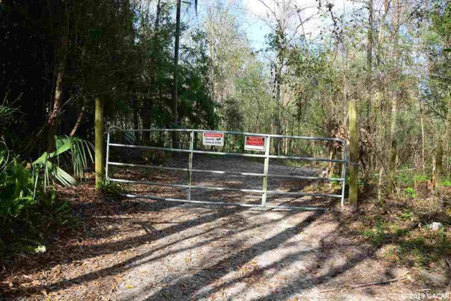 22401 NW 91 Court Road, Micanopy, FL 32667 (MLS #422538) :: Rabell Realty Group