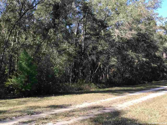 TBD Lot 2 NE 160th Avenue, Williston, FL 32696 (MLS #422580) :: Bosshardt Realty