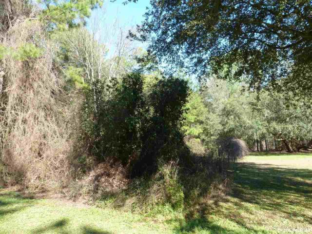 123 Ramsey Drive, Melrose, FL 32666 (MLS #422817) :: Bosshardt Realty