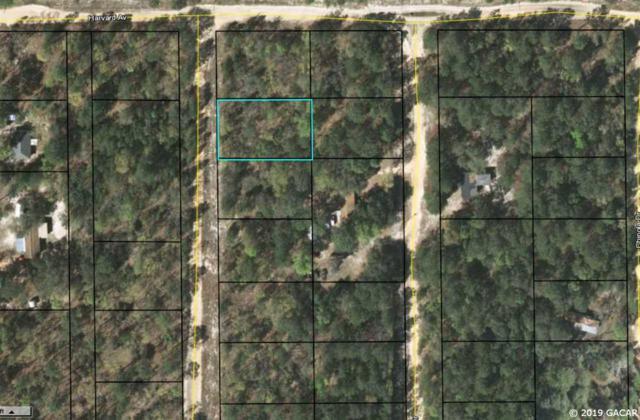 7318 Lehigh Drive, Keystone Heights, FL 32656 (MLS #422865) :: Rabell Realty Group