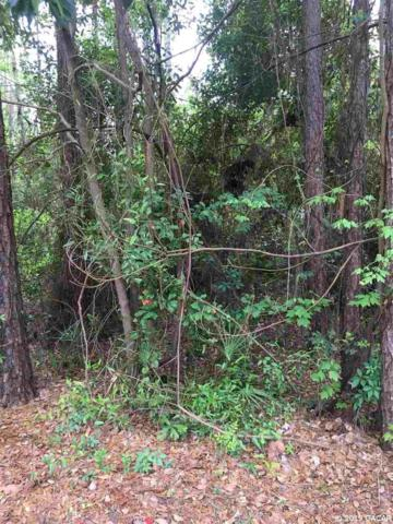 19146 North Highway 329, Micanopy, FL 32667 (MLS #423113) :: Rabell Realty Group