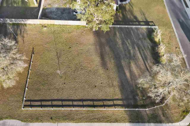 25170 SW 21st Place, Newberry, FL 32669 (MLS #423138) :: OurTown Group