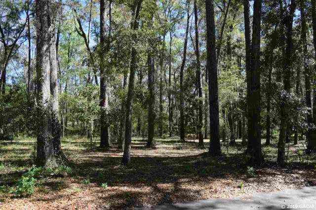 3940 NW 30TH Place, Gainesville, FL 32605 (MLS #423174) :: OurTown Group