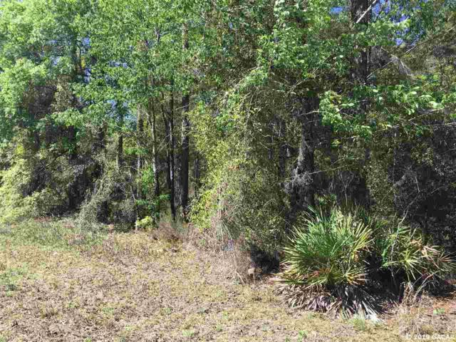 TBD NE 128th Terrace, Williston, FL 32696 (MLS #423789) :: Bosshardt Realty