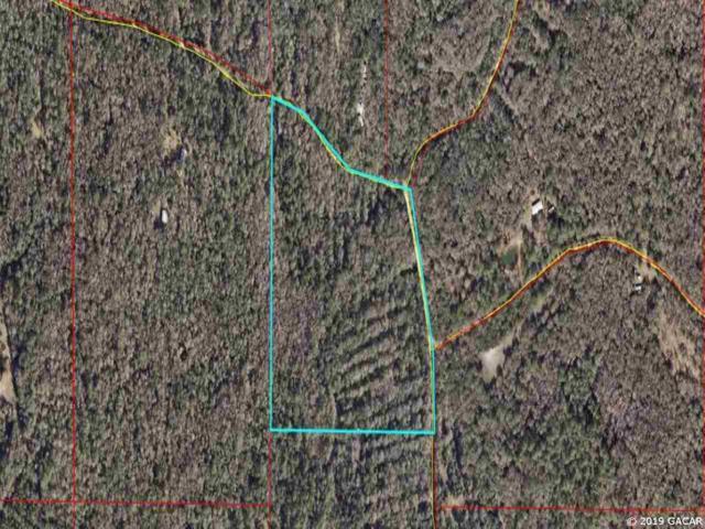 24.96 Acres Buck Trail, Cedar Key, FL 32626 (MLS #423894) :: Bosshardt Realty