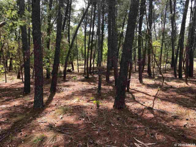 000 Hill Top Loop, Hawthorne, FL 32640 (MLS #424192) :: Bosshardt Realty
