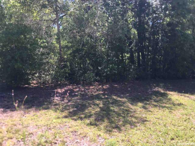 TBD Ne 142nd Avenue, Williston, FL 32696 (MLS #424514) :: OurTown Group