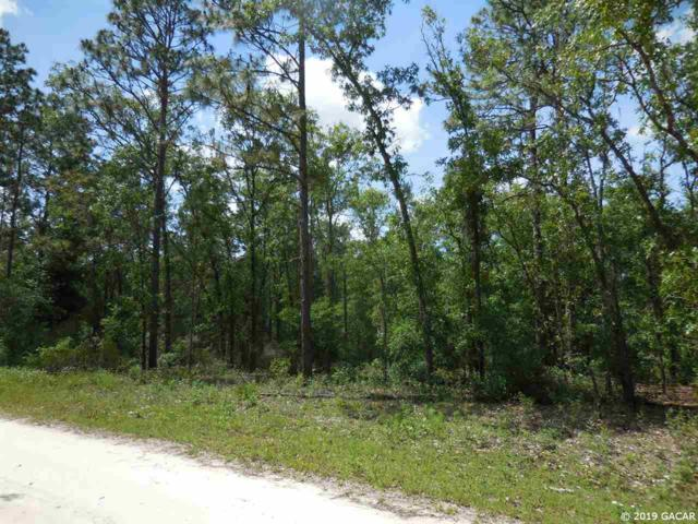 10291 NE 74th Place, Bronson, FL 32621 (MLS #424907) :: Bosshardt Realty