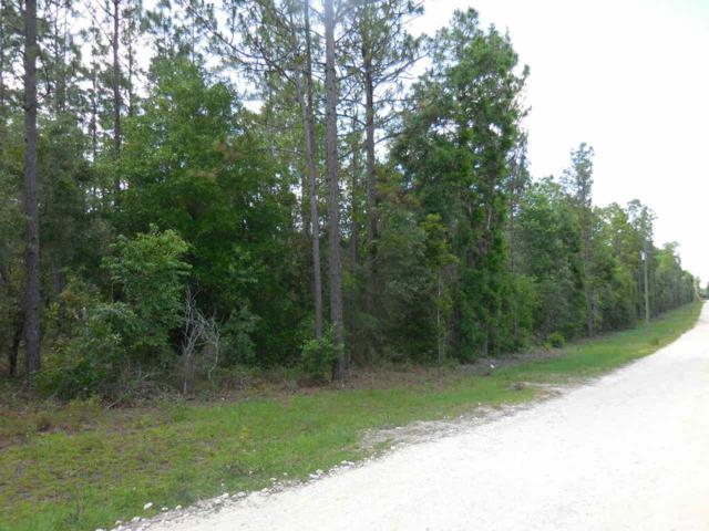 tbd NE 91st Court, Archer, FL 32618 (MLS #424908) :: Pepine Realty