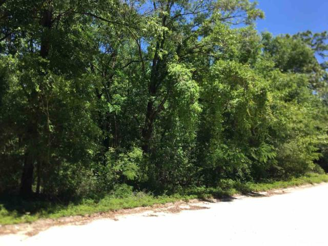 TBD NE 67th Lane, Bronson, FL 32621 (MLS #424976) :: Pristine Properties