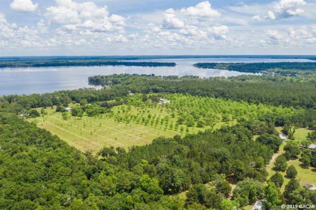 20230 NE 132nd Avenue, Waldo, FL 32694 (MLS #425020) :: Florida Homes Realty & Mortgage