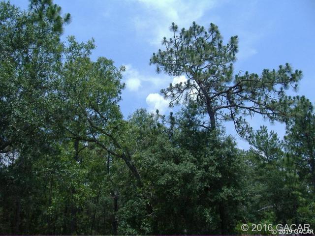 158 Melrose Landing Boulevard, Hawthorne, FL 32640 (MLS #425138) :: Better Homes & Gardens Real Estate Thomas Group