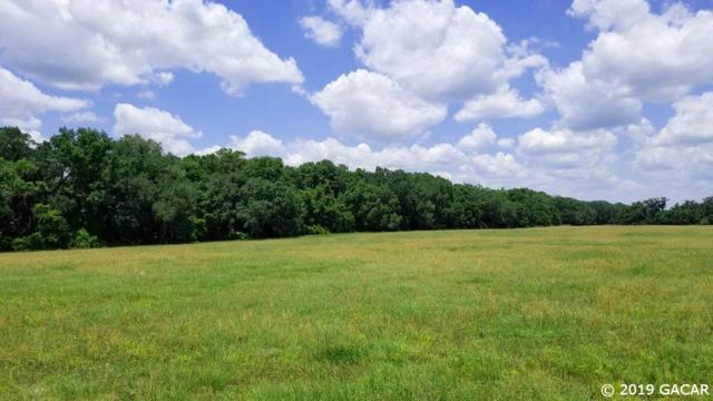 TBD NE 86th Lane, Williston, FL 32696 (MLS #425407) :: Bosshardt Realty