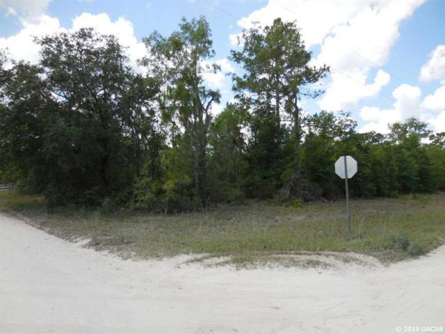 12090 NE 106th Court, Archer, FL 32618 (MLS #425431) :: Bosshardt Realty