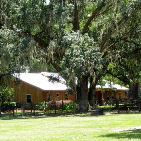 17550 NE 55th Street, Williston, FL 32696 (MLS #425440) :: Bosshardt Realty