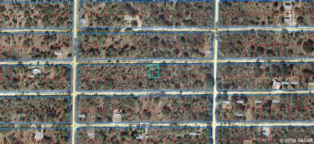 TBD NE 67 Lane, Williston, FL 32696 (MLS #425569) :: Pristine Properties